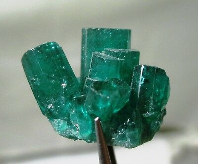 24.1 ct Chatham emerald cluster - lab grown actual emerald cluster - rough