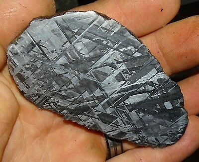 Amazing 244 Gm. Muonionalusta Etched Meteorite End Cut