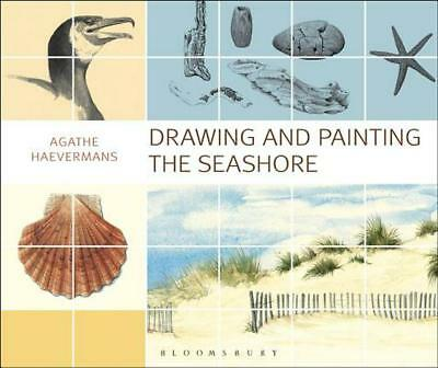 Drawing and Painting the Seashore by Agathe Ravet Haevermans (English) Paperback