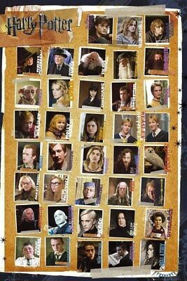Harry Potter Character Montage and the Deathly Hallows Maxi Poster 61 x 91,5 cm