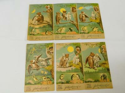Complete Set 6 Antique 1886 LARKIN Sweet Home SOAP Advertising Trading Cards OWL