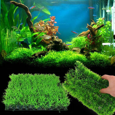 Artificial Water Aquatic Green Grass Plant Lawn Aquarium Fish Tank Ornaments Acc
