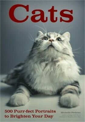 Cats: 500 Purr-Fect Portraits to Brighten Your Day (Paperback or Softback)