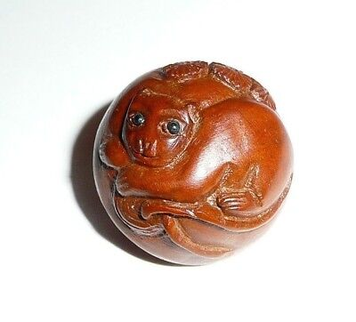 "Kitty Cat Hand Carved Round Boxwood Shank Button - Approx. 1""  Wood Button"