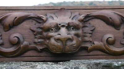 SUPERB 19thc GOTHIC WALNUT CARVED PANEL WITH LION HEAD & ACANTHUS LEAF DECOR (2)