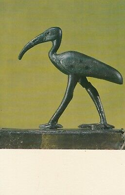 Postcard - Egypt / Ibis, bird sacred to Toth, god of writting and wisdom