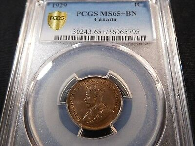 Z34 Canada 1929 Small Cent PCGS MS-65+ Brown