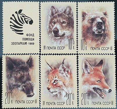 Russia USSR 1988 Sc # B141 to Sc # B145 Semi Postal Animals Mint MNH Stamps Set