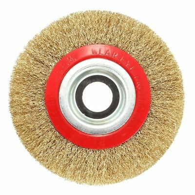 Wire Brush Wheel for Bench Grinder Polish + Reducers Adaptor Rings,6inch 150M YV