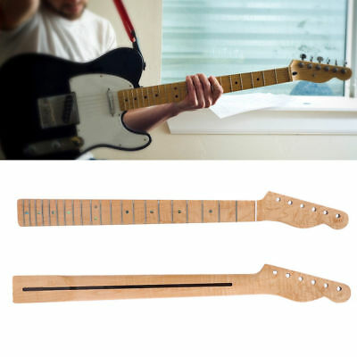 New 21 Fret Curly Maple Guitar Neck Abalone Shell Dots for TL Telecaster Guitar
