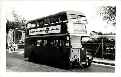 BUS PHOTOGRAPH, RT 3978, LUC 137, Route - 183 Golders Green Station