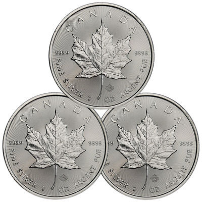Lot of 3 - 2019 Canada 1 oz. Silver Maple Leaf $5 Coins GEM BU SKU55535
