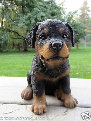 Rottweiler Puppy sitting Dog Figurine Statue Resin Pet  Canine New  Rottwyler