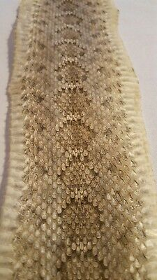 Az Western Diamondback Snake Skin - Tanned - Great Pattern - Hobby Decoration