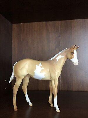Peter Stone Horse Weanling Pinto Enduring Freedom