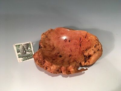 Red Mallee Burl G+ Hand Turned wood Bowl #14176 SMITHSONIAN Walsh 3.5-1
