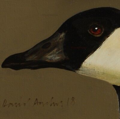 CANADA GOOSE : ORIGINAL OIL PAINTING : Poultry Geese Bird Art by David Andrews