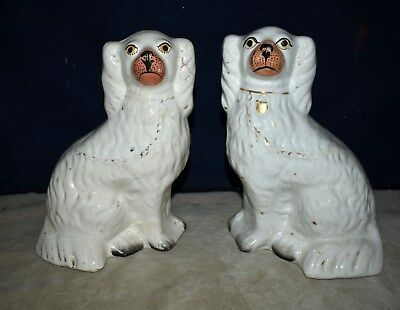 Rare! Antique Pair Of Staffordshire Spaniel Mantel Dogs - Hand-Painted