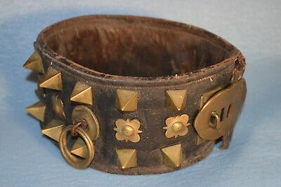 Large 24 inch by 4 inch Antique Leather  Brass Studded  Dog Collar 19th century