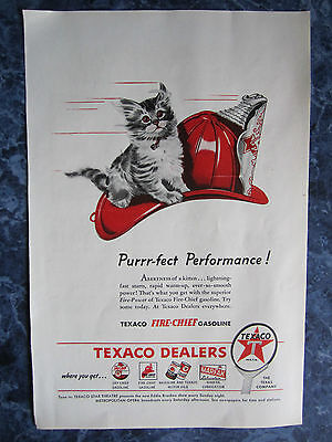 Vintage 1930 TEXACO FIRE-CHIEF GASOLINE W FURRY KITTEN Advertising Color Sign/Ad