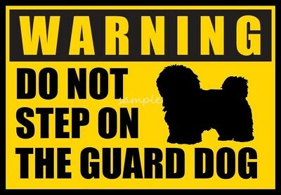 HAVANESE Warning Do Not Step on Guard Dog Magnet  4 x 3in