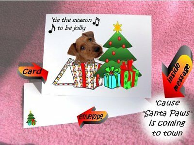 30 Irish Terrier Christmas cards & envelopes laser 60 pieces gift box design