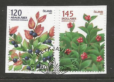 ICELAND 2007  WILD BERRIES (2) ON A PIECE, SCOTT 1166-1167, USED (o)