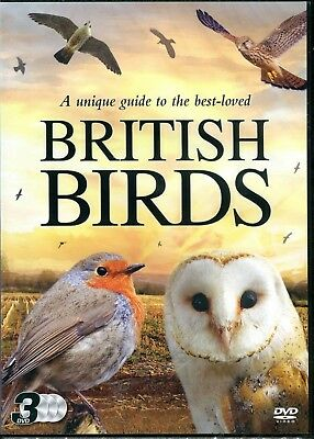 British Birds 3 DVD Set Towns Parks Gardens Fields and Farmland Coast Cliffs