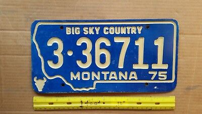 License Plate, Montana, 1975, Recessed Lettering, Big Sky Country, 3 - 36711