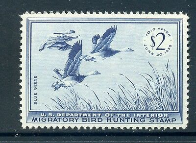 Scott #RW22 'BLUE GEESE' Federal Duck Mint Stamp NH (Stock #RW22-1)
