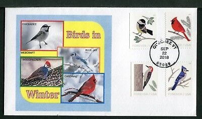 5312-15 * Birds In Winter * 2018 Issue * All Four On One Fdc >