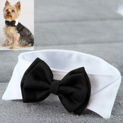 Fashion Adjustable Bow Tie Collar Necktie Bowknot Clothes For Pets Dogs Cats New