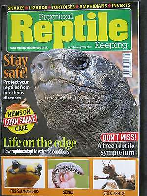Practical Reptile February 2015 Fire Salamanders Skinks Stick Insects Corn Snake