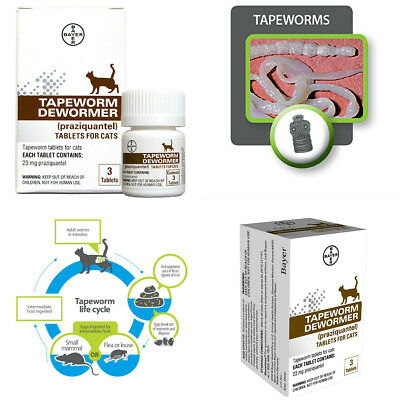 Bayer Animal Tapeworm Dewormer Cat Kittens Care Effective Easy Tape Worm 6 Weeks