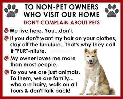 AKITA House Rules for Non Pet Owners Fridge Magnet
