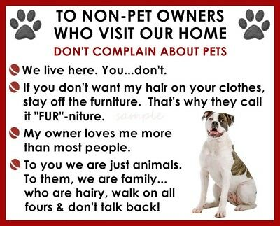 AMERICAN BULLDOG House Rules for Non Pet Owners Fridge Magnet
