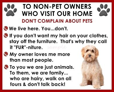 LABRADOODLE  House Rules for Non Pet Owners Fridge Magnet