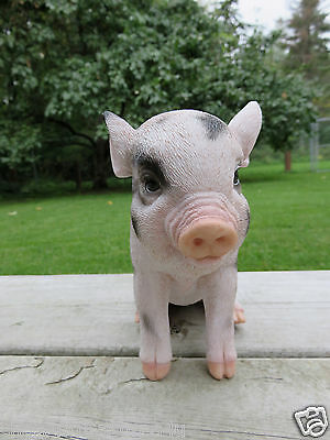 Small PIG 6 in.H X 7.5 in. L. spotted SITTING  animal farm piglet oinker resin