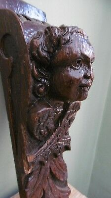 SUPERB 18thc ARCHITECTURAL OAK CARVED WINGED ANGEL CORBEL