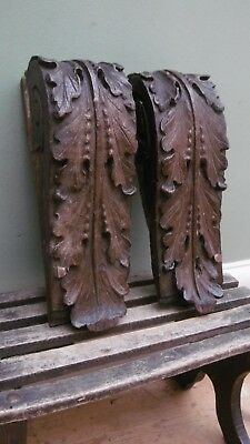 SUPERB Pr 19thc ARCHITECTURAL OAK CARVED ACANTHUS LEAF CORBELS