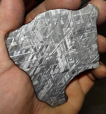 Beautiful Large 212 Gm Etched Gibeon Meteorite Slice From Namibia