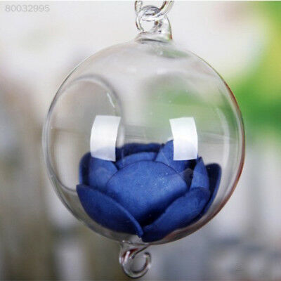 4963 Transparent Glass Vase for Home Garden Decor Hanging Container Glass Ball