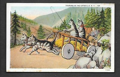 Touring In The Catskills NY Cats Comic Postcard b336