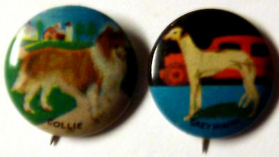 lot of 2 VTG 1930s tin-litho pinback buttons Dogs - Collie and Greyhound !!!!!!!