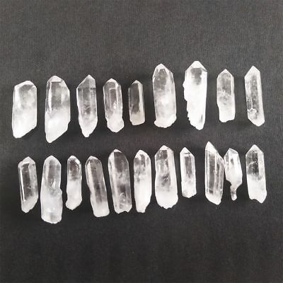 Crafters Rock Collection 10pcs Gems Crystals Natural Mineral Specimen AA