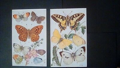Tuck's Oilettes Butterflies on the Wing by N.Braby,set of 6,in original envelope