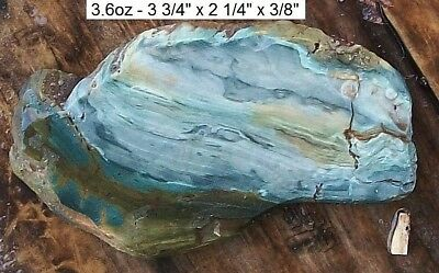 Nevada - Gary Green Swamp, Bog Wood Jasper Slab - Blues & Greens