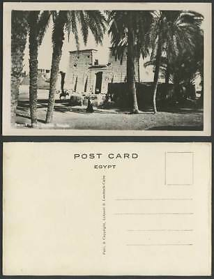 Egypt Old Real Photo Postcard Karnak Temple Ruins Entrance Gate Palm Trees L & L