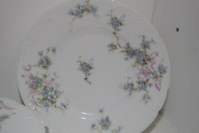 Theodore Haviland Limoges France Plates, Bowls, Cups, Saucers-Blue/pink Flowers