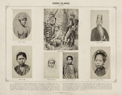 1870's  PHOTO ETHONOGRAPHIC -  DAMMANN SUNDA ISLANDS BALI JAVA BORNEO DAYAK